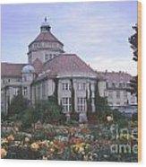 Castle Ludwig II Wood Print