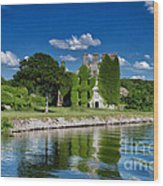 Castle Menlo  Wood Print