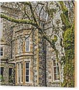 Castle Of Scottish Highlands Wood Print