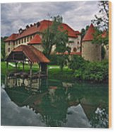 Castle Otocec Wood Print