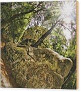 Castle Rock State Park Bolder Wood Print
