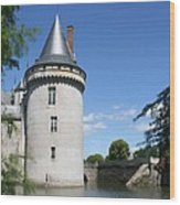 Castle Sully Sur Loire - France Wood Print
