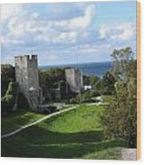 Castle Towers Wood Print