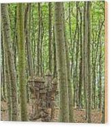 Castle Tree Stump Wood Print