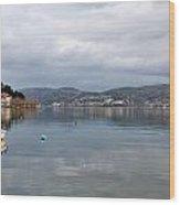 Kastoria Lake In Greece Wood Print