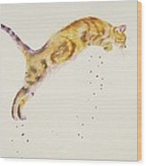 Cat-a-pult Wood Print
