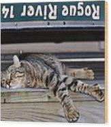 Cat And A Canoe Wood Print