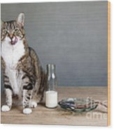 Cat And Herring Wood Print