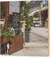 Cat And Restaurant Concarneau Brittany France Wood Print