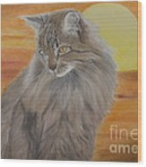 Cat And Sunset  Wood Print