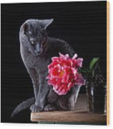 Cat And Tulip Wood Print
