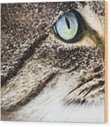 Cat Art - Looking For You Wood Print