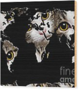Cat Eyes World Map 2 Wood Print by Andee Design
