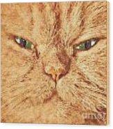 Cat Face Close Up Portrait. Painted Effect Wood Print