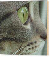 Cat Face Profile Wood Print