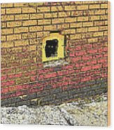 Cat In A Hole In A Wall Wood Print