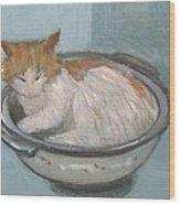 Cat In Casserole  Wood Print