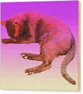 Even If Your Little Cat Is Resting In Space Or In Heaven She Still Loves You  Wood Print