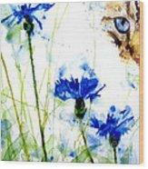 Cat In The Cornflowers Wood Print by Paul Lovering