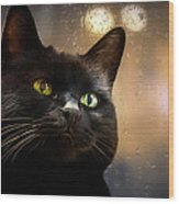 Cat In The Window Wood Print by Bob Orsillo