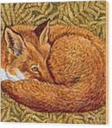 Cat Napping Wood Print by Ditz