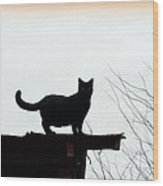 Cat On A Tin Roof 2 Wood Print