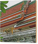 Cat On A Wat Po Roof In Bangkok-thailand Wood Print