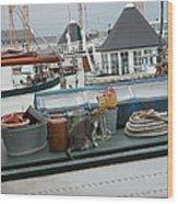Cat On Boat Wood Print