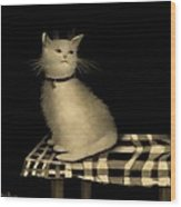 Cat On Checkered Tablecloth   No. 1 Wood Print