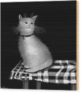 Cat On Checkered Tablecloth   No. 3 Wood Print