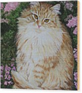 Kitten Cat Painting Perfect For Child's Room Art Wood Print