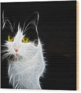 Cat Portrait Fractal Artwork Wood Print