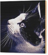 Cat Profile Wood Print