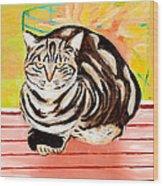 Cat Relaxing Wood Print