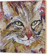Feline Portrait  Wood Print