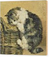 Cat With A Basket Wood Print