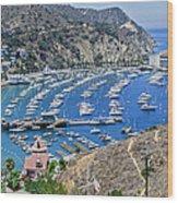 Catalina Harbor Wood Print