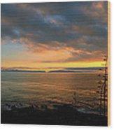 Catalina Island Sunset Wood Print
