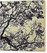 Catalpa Tree Gold Wood Print