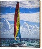 Catamaran At The Beach Wood Print