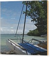 Catamaran On The Beach Wood Print