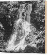 Cataract Falls Smoky Mountains Bw Wood Print