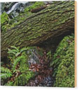 Cataracts Canyon Log And Streem Wood Print