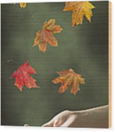 Catching Leaves Wood Print