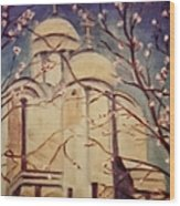 Cathedral At Springtime Wood Print