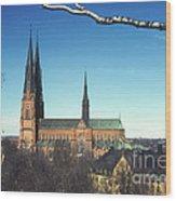 Cathedral At Uppsala Wood Print