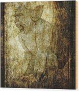 Cathedral Gargoyle Wood Print