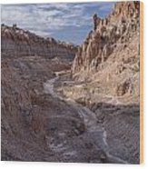 Cathedral Gorge Wash Wood Print