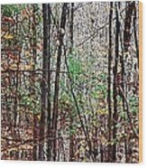 Cathedral In The Woods Wood Print