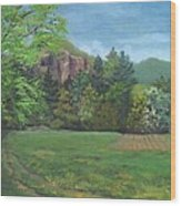 Cathedral Ledge From Westside Road Wood Print